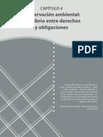 CONSERVACIÓN AMBIENTAL-EQUILIBRIO DERECHOS OBLIGACIONES