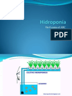 Hidroponía basica