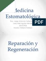 Reparación y Regeneración