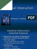 Intestinal Obstruction July 2008