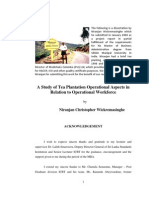 A Study of Tea Plantation Operational Aspects in Relation to Operational Workforce