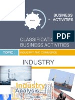 Classification of Business Activities