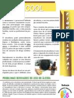 Publica+º+úo ALCOOLmarrom e laranja