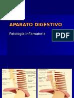 APARATO DIGESTIVO-patología inflamatoria