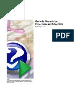 Manual de Enterprise