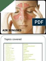 Air Sinuses