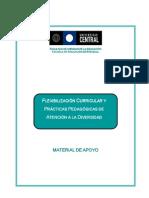 Flexibilización curricular doc ucentral