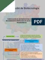 Presentación de Biotecnologóa