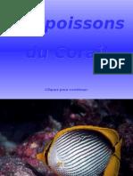 Lespoissonsducorail111