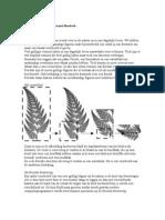PO Wiskunde Fractals Inleinding en Algmene Eigenschappen