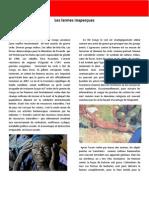 Le Point Critique- Par Pramudith D Rupasinghe - VVS de RD Congo
