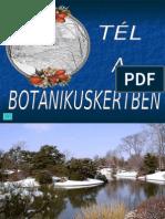 Tél a Botanikuskertben