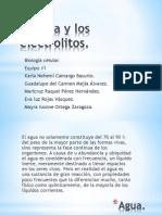 El_agua_y_los_electrolitos