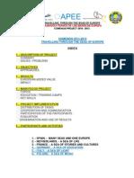 Comenius Summary 2011-13