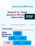 ICAO SMS M 10 – Approach (R013) 09 (E)