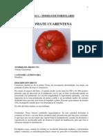 8 Producte Tomate Cuarentena Casing
