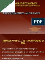 2a - Procedimentos Mutilantes LEI 2008