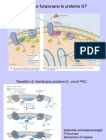 04  recett di membrana 2