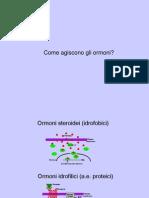 03  recett di membrana 1