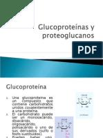 Glucoproteínas