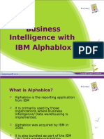 Business Intelligence With IBM Alphablox - An Overview