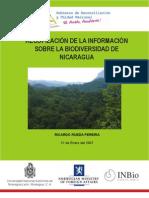 Informe-Nicaragua