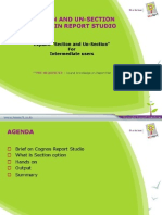 Section and Unsection Option in Report Studio