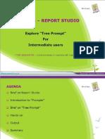 Tree Prompts in Report Studio