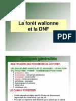 2_La forêt wallone et la DNF