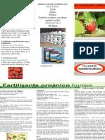 Programa fertilizacion Fresa