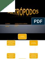 Artropodos San Antonio.pptx1