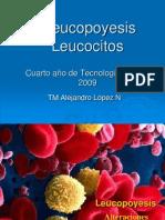 leucopoyeisyleucocitosnxpowerlite-091022082952-phpapp01