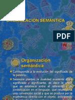 ORGANIZACIÓN SEMANTICA
