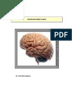 Neuroanatomia Clínica de Nava Segura