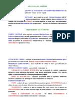 Anatomia Das Madeiras