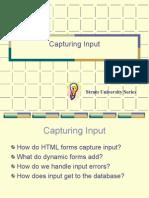 Capturing Input(2)