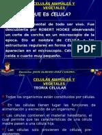 La célula - CLASE
