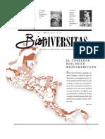 Corredor Mesoamericano Conabio