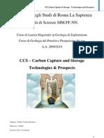 Relazione Carbon Capture and Storage (PDF)