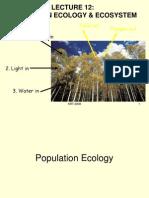 Population n Ecosystem-krt