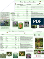 New York; Rain Garden Plant List - Cornell University