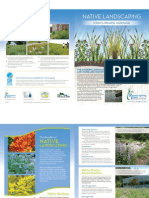 Iowa; Native Landscaping Brochure - Rainscaping Iowa