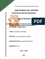 NECROSIS HEMATOPOYETICA INFECCIOSA