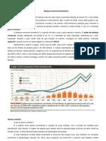 Trabalho de Geografia - Balança Comercial Brasileira