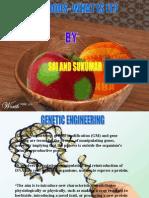GM FOODS by sai sukumar