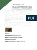Produccion de Nopal en Mexico