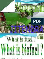 biofual