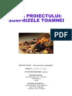 PROIECT 2 - ZANA TOAMNA
