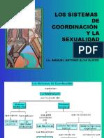 Psicologia de La Sexual Id Ad 3º Clase -Los Sistemas de Coordinación