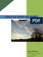 Aerul CA Factor de Mediu (1)